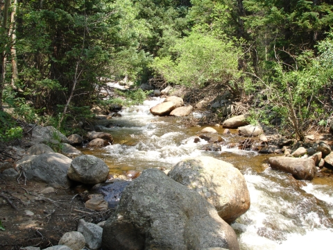 North Boulder Creek Courses Through Caribou Ranch