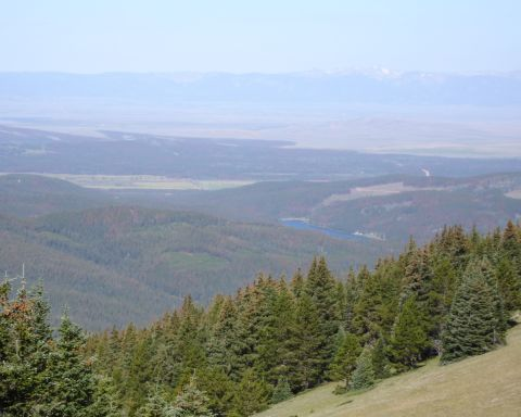 Looking West from Montgomery Pass