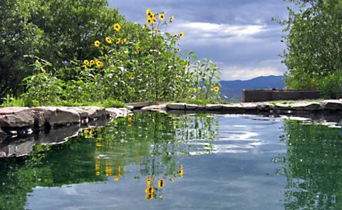 One of Four Soaking Ponds (Photo by John Lorenz)