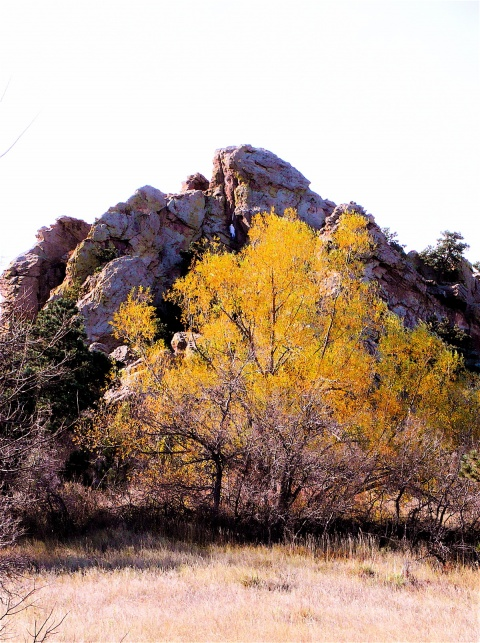 Near the Start of the Mount Sanitas Trail (the white form is a climber)