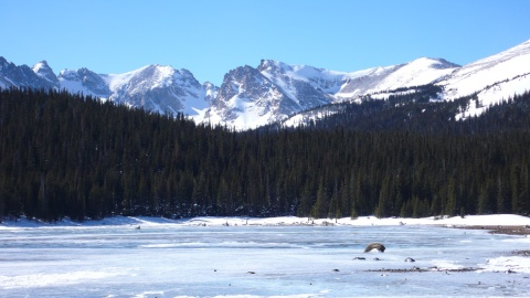 Brainard Lake and Some of the Indian Peaks