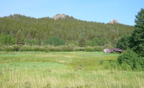 Frazer Meadow and Frazer\'s Cabin