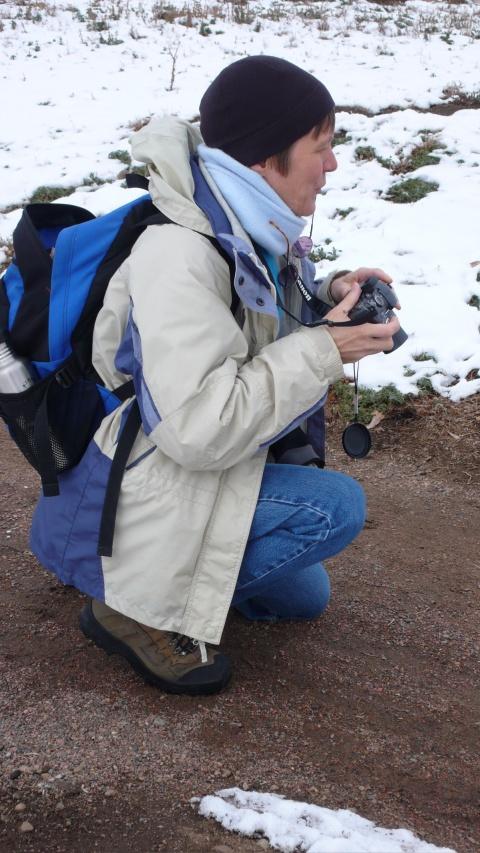 Ms. Karen M. LaVine, RN, CDE