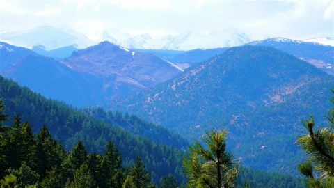 The Rockies from the Tenderfoot Trail