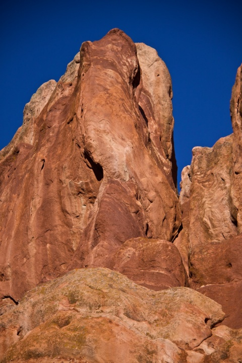 'Animal Rock'