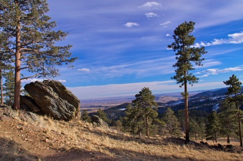 Trail (at lower left), Pines, Rock, Plains and Sky