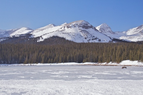 Brainard Lake, Elevation 10,300 Feet