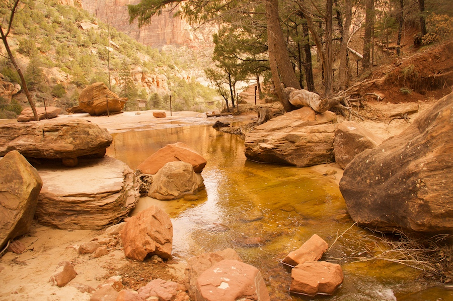 Zion National ParkFirst Photograph