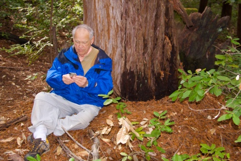 John Reads About Redwoods as He Leans on One