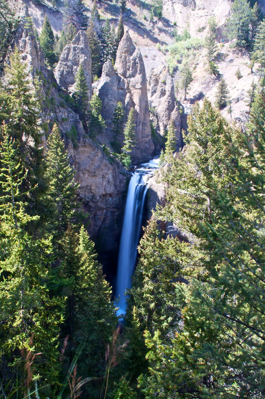 Yellowstone Bonuses