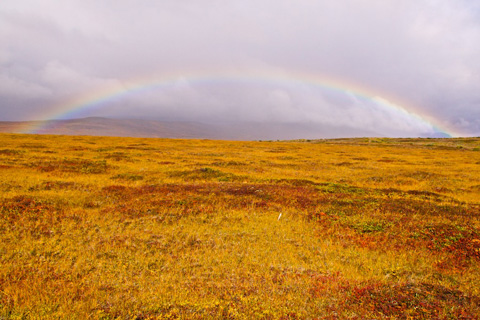 A Complete Rainbow in the Tundra
