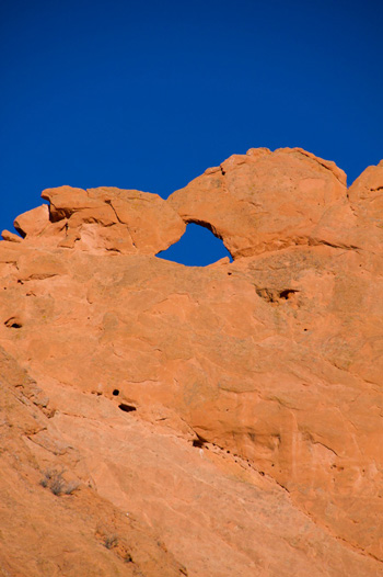 """Kissing Camels"" from the West"