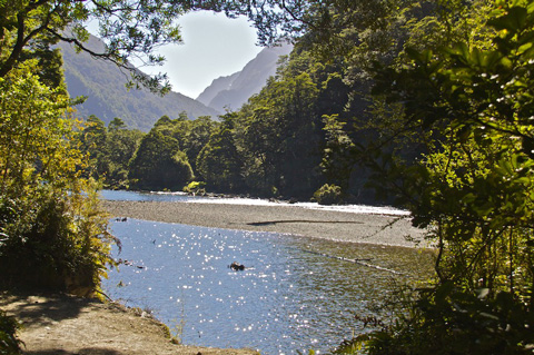 The Clinton River at the Start of the Milford Track