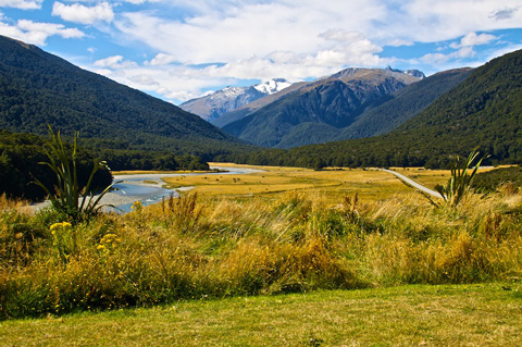 The View Back to the Mountains from the Dry Side of Haast Pass