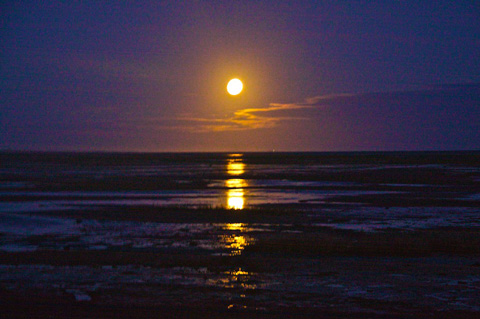 The Full Moon Rising Capped My Tour of Farewell Spit