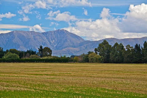 A Scene of the Canterbury Plains