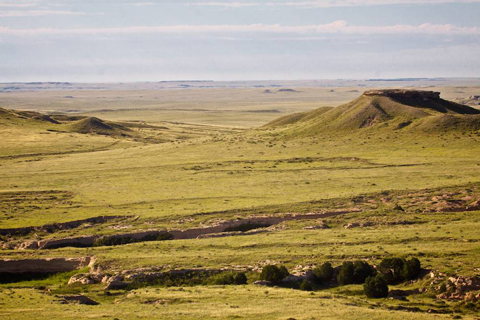 A View of the Prairie within Pawnee National Grassland