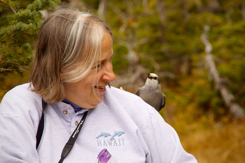 A Gray Jay on Sharon's Shoulder