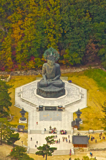 The Buddha Below
