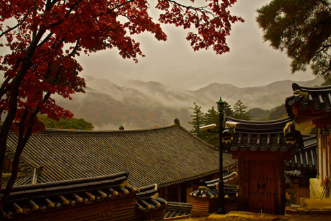 The View from the Temple in Fog and Rain