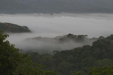Fog over the Panama Canal
