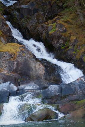 A Stream Tumbles into Lynn Canal