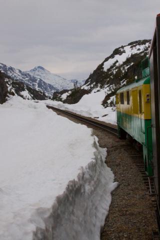 Through the Snow near White Pass Summit