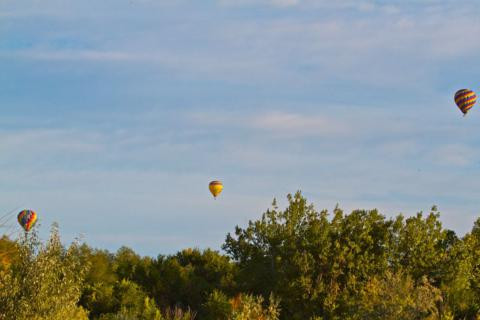 Three Balloons over Boulder