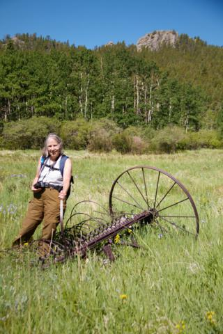 John Frazer May Have Used This Hay Rake; Sharon Tried