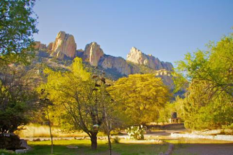 Feeders in the Foreground, Cave Creek Canyon in the Background