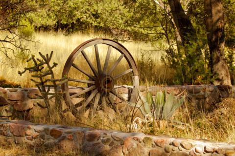 Some Symbols of the Southwest