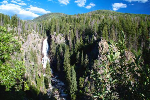 Fish Creek Falls Cascades 283-feet Over a Cliff in Routt National Forest