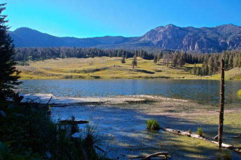 Yellowstone's Trout Lake in Early Afternoon Sun (Canon 7D with 18-200mm lens at 18mm, f/11, 1/350, ISO 800)