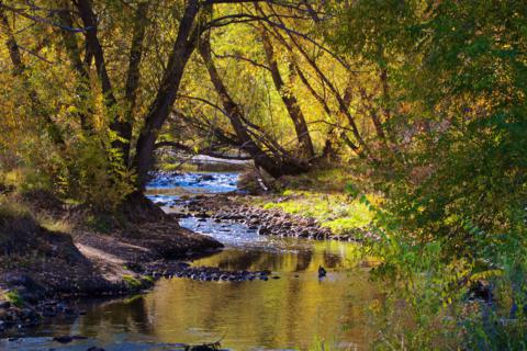 Clear Creek Flows Through Prospect Park (Canon 7D with 100-400mm lens at 100mm, f/11, 1/180, ISO 800)