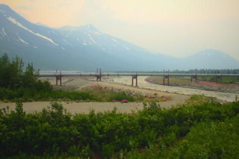 The Trans-Alaska Pipeline Crosses Miller Creek near Glennallen, Alaska