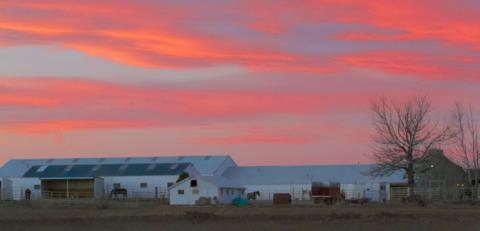 A Rock Creek Farm Building at Sunset