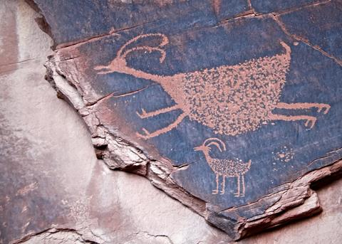 Petroglyphs of Animals that Once Lived in the Valley