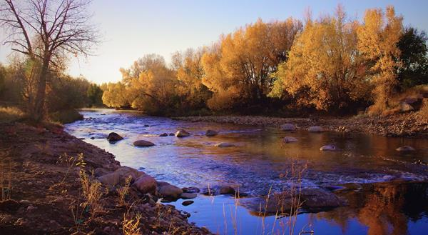 The Cache la Poudre at First Light