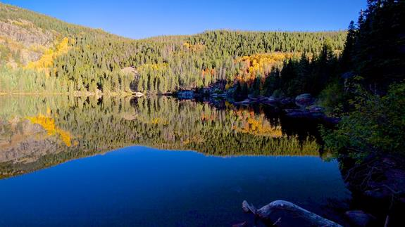 A Bear Lake Reflection