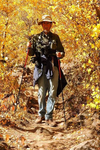 Hiking Through Turning Aspens