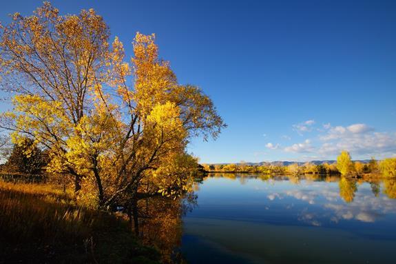 Autumn Has Arrived at Kountze Lake in Lakewood