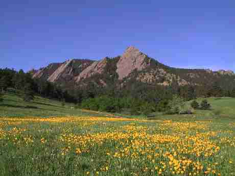 Flatirons with Poppies, Boulder
